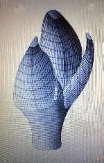 Rekonstruktionszeichnung Litholepas klausreschi