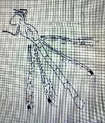 Rekonstruktionszeichnung Reschiostenophlebia koschny