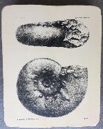Lithographiesteine