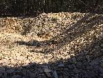 Ansicht von Pfalzpaint